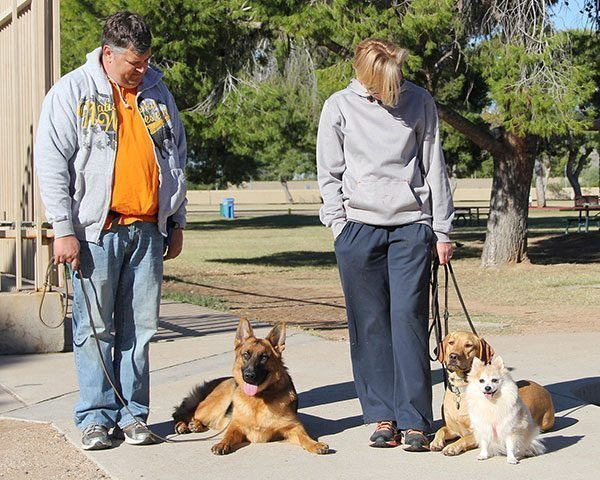 dog boarding and training, dog training phoenix, dog training scottsdale, quality k9, tino reinke, angelika clark