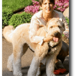 Gloria Buddy Wheaton Terrier Training