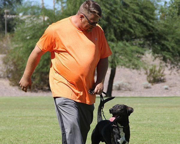 on leash dog training, quality K9, tino reinke, angelika clark