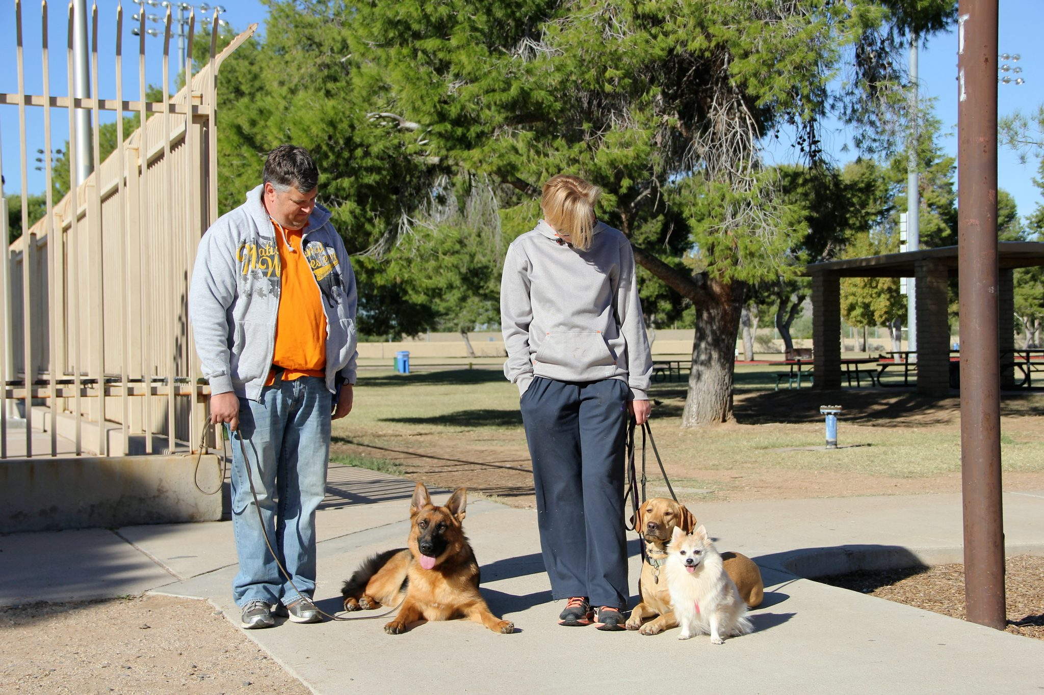dog training phoenix scottsdale, quality k9, tino reinke, angelika clark